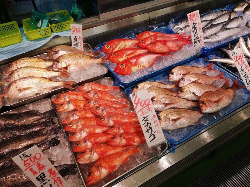 角上魚類 鮮魚6